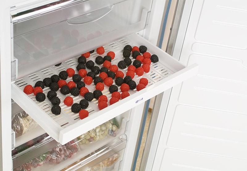 Поднос для заморозки мелких продуктов
